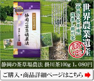 世界農業遺産の茶草場農法深蒸し掛川茶