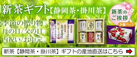 新茶ギフトの贈り物を通販産地直送でご予約受付中