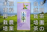 無農薬、無化学肥料の自然栽培茶
